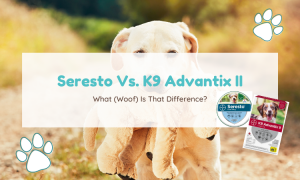 seresto vs advantix