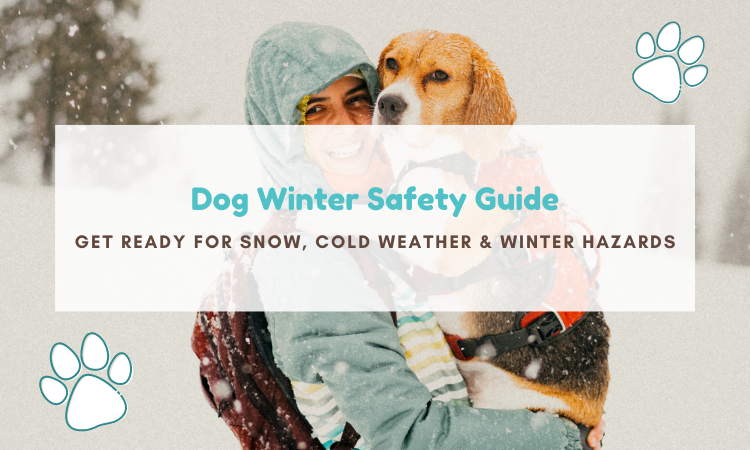 winter cold- eather safety